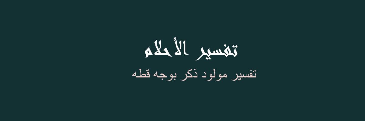 تفسير مولود ذكر بوجه قطه  في المنام