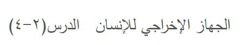 بنك اسئلة احياء حادي عشر مع الاجابة الجهاز الإخراجي للإنسان فترة ثالثة و رابعة