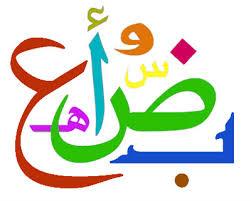 كتاب الشامل في قواعد اللغة العربية صف حادي عشر