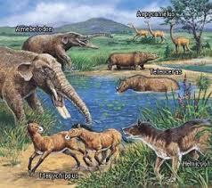 ورقة عمل لدرس الثدييات للصف الثاني عشر العلمي