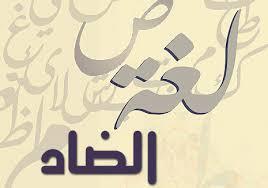 أسئلة متنوعة وشاملة لمادة اللغة العربية الصف الحادي عشر