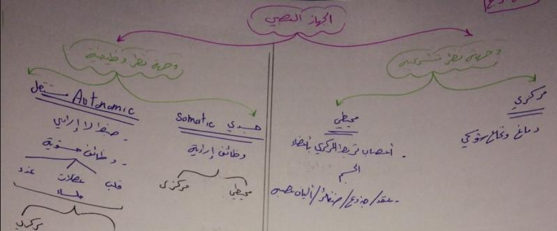 فصل رابع فيزيولوجيا بشكل مخططات لطلاب السنة التحضيرية في سوريا