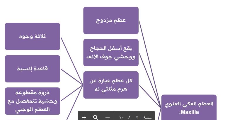 ملحق الهيكل العظمي والمفاصل التشريح لطلاب السنة التحضيرية في سوريا