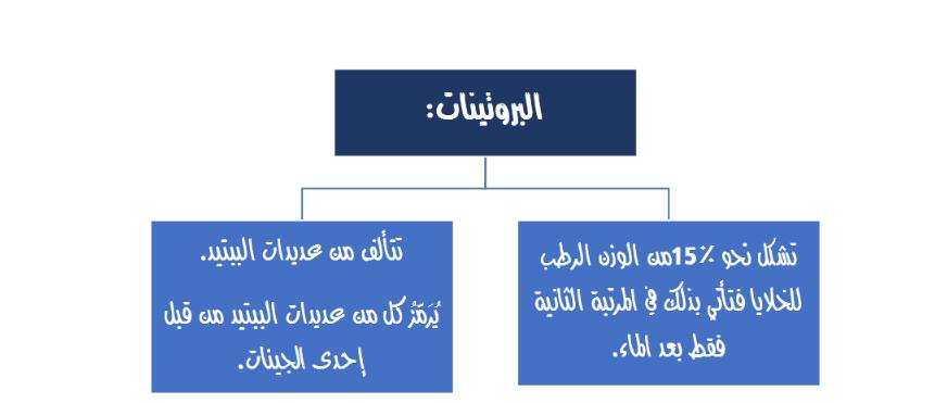ملحق الفصل السادس وراثة لطلاب السنة التحضيرية في سوريا