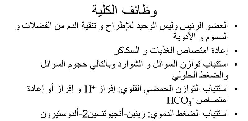 فيزيولوجيا الكلية لطلاب السنة التحضيرية الطبية في سوريا