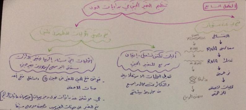 وراثة الفصل السابع على شكل مخططات لطلاب السنة التحضيرية في سوريا