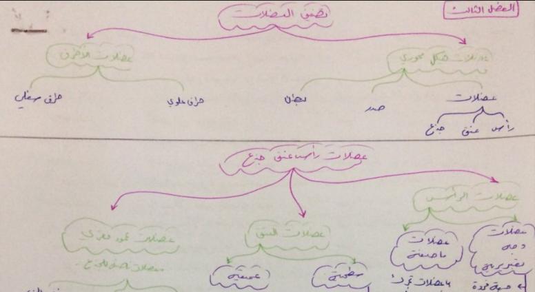 تشريح الفصل الثالث على شكل مخططات لطلاب السنة التحضيرية في سوريا