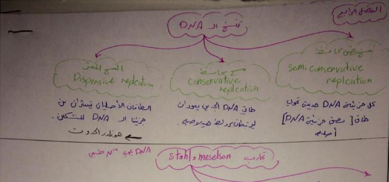 وراثة الفصل الرابع على شكل مخططات لطلاب السنة التحضيرية في سوريا