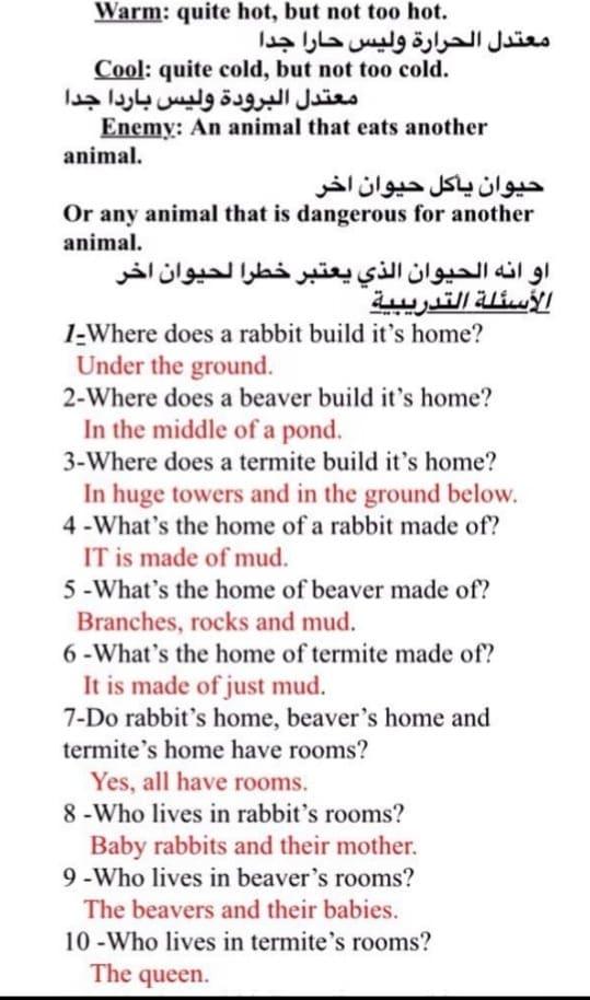 الصف الثالث في الامارات انكليزي مفردات من كتاب الانشطة الدرس 5