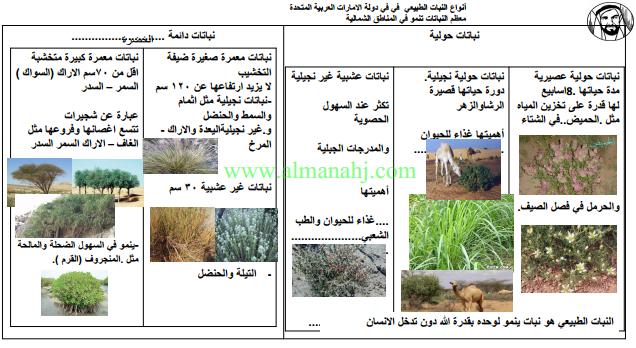 اجتماعيات الموارد والأنشطة الغابية