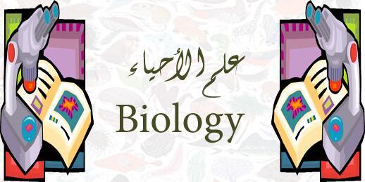 اسئلة اختبارات الصف الثاني عشر العلمي بمادة الأحياء 2018-2019