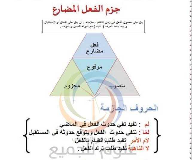 الصف السابع اللغة العربية درس جزم الفعل المضارع