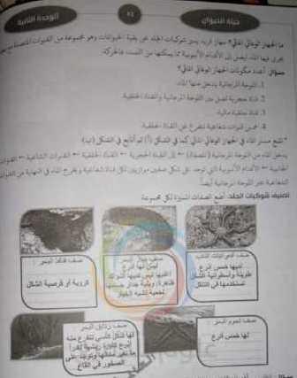 الصف الثامن العلوم حل وشرح الوحدة الثانية