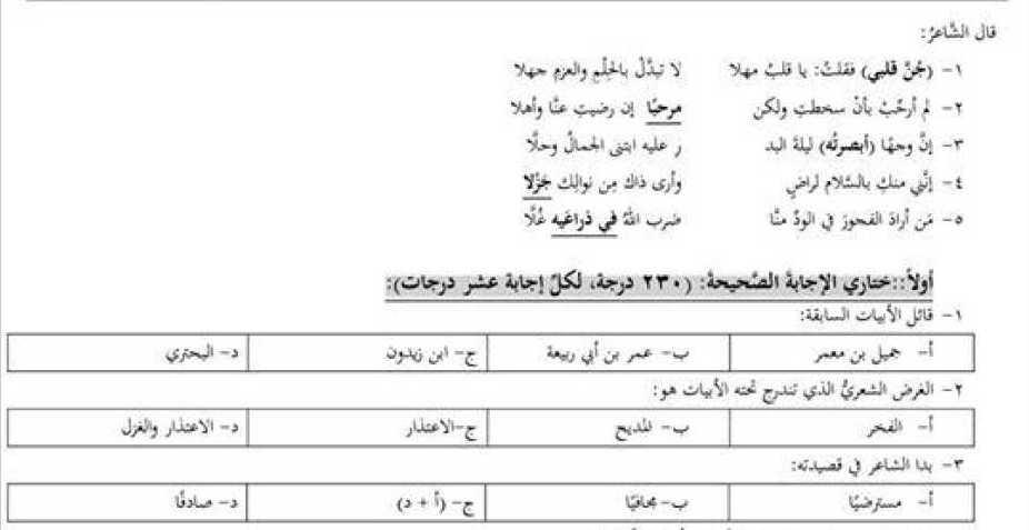 الصف العاشر اللغة العربية نموذج مذاكرة