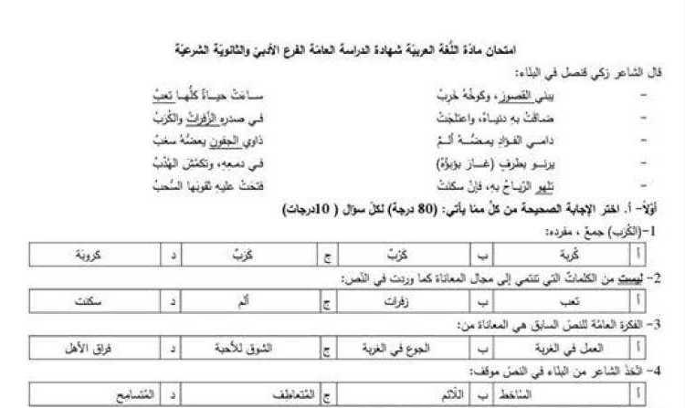 البكالوريا الأدبي اللغة العربية النموذج الوزاري