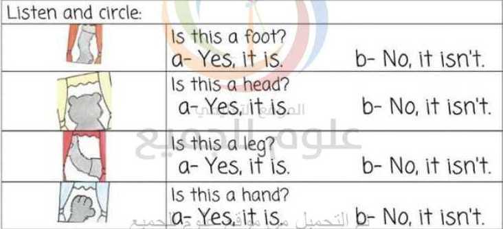 الصف الأول اللغة الانكليزية اوراق عمل الدرس 13