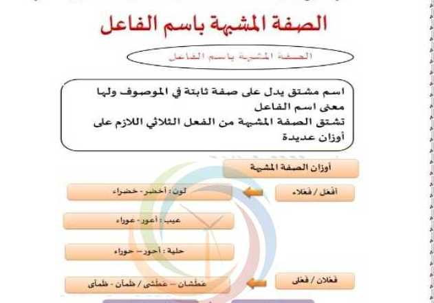 شرح درس الصفة المشبه بإسم الفاعل اللغة العربية الصف الثامن