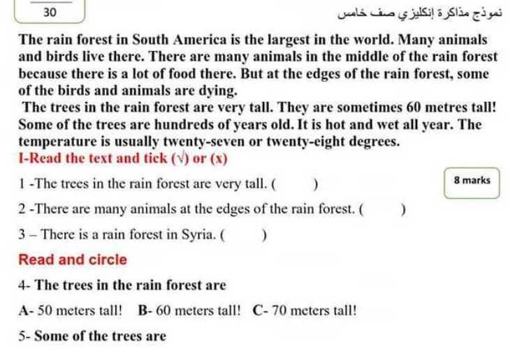نموذج مذاكرة الفصل الثاني اللغة الانكليزية الصف الخامس