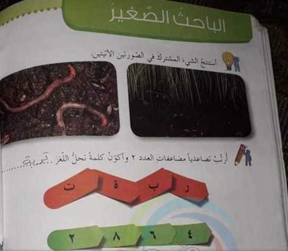 حل درس (الباحث الصغير) اجتماعية الصف الثالث