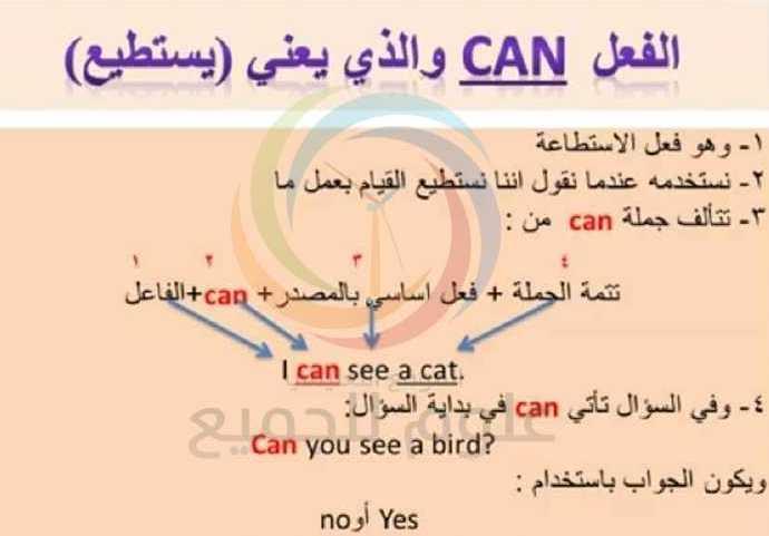 شرح قاعدة الفعل can اللغة الانكليزية الصف الثالث