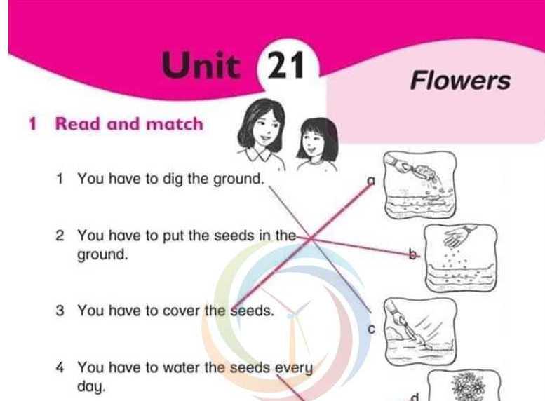 حل الدرس 21 اللغة الانكليزية الصف الرابع