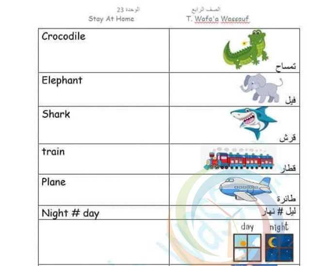 شرح الوحدة  23 اللغة الانكليزية  الصف الرابع