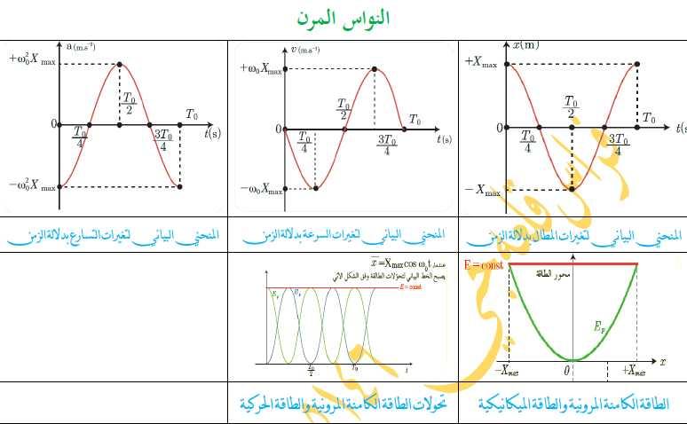 الخطوط البيانية الفيزيائية البكالوريا العلمي