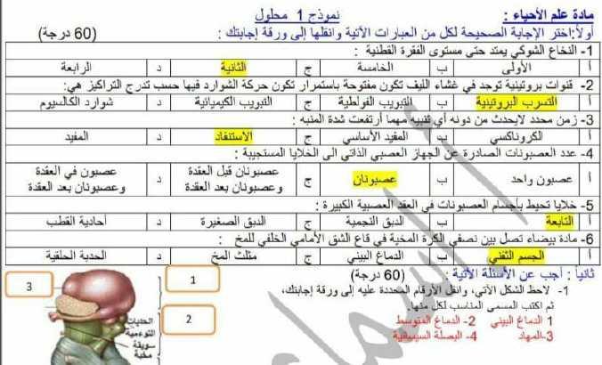 أربع نماذج امتحانية محلولة علوم البكالوريا العلمي
