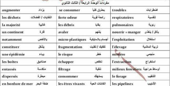 مفردات الوحدة الرابعة مع نص حوار اللغة الفرنسية بكالوريا