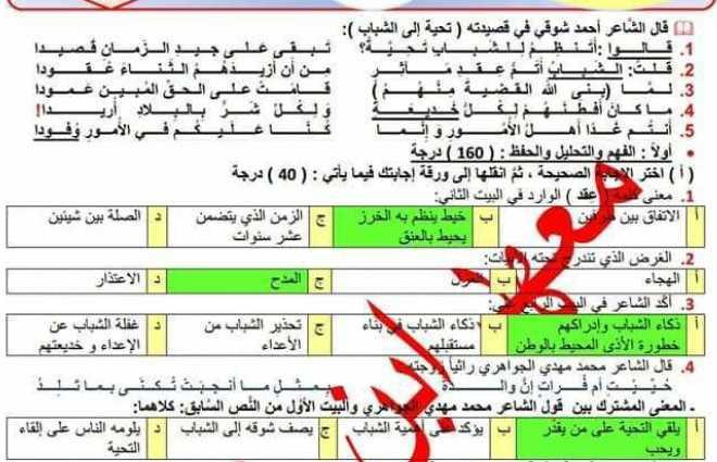 نموذج شامل مع الحل اللغة العربية الصف التاسع
