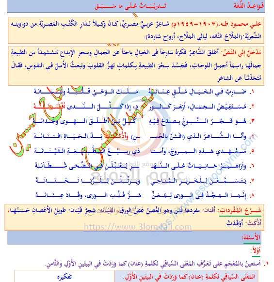 نوطة شرح اللغة العربية الصف التاسع