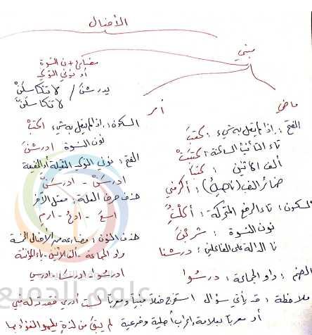 مراجعة الأفعال وعلامات الإعراب الفرعية اللغة العربية الصف التاسع