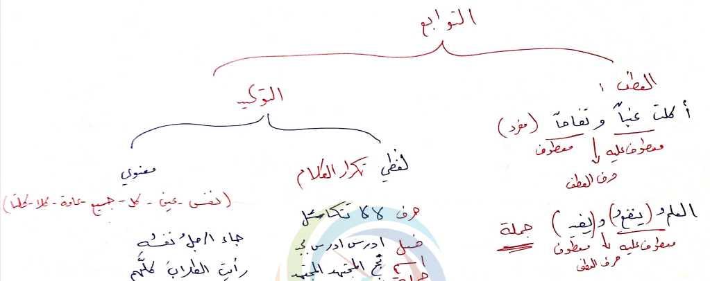 مراجعة التوابع اللغة العربية الصف التاسع
