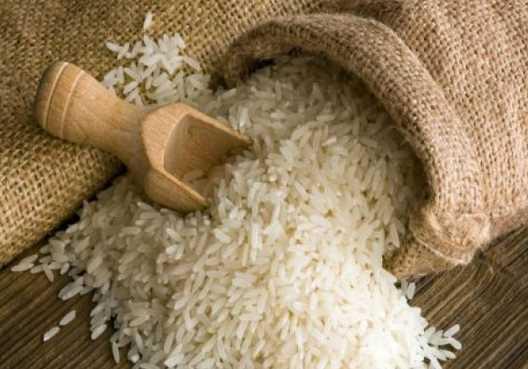 أرز هوائي ! في سوريا و بسعر 150 ل.س خلال العام القادم